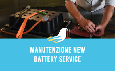 Manutenzione New Battery Service